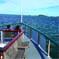 Boston Sightseeing Cruise